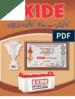 Exide Report 2010