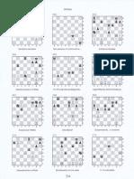 54.pdf,esercizi scacchi