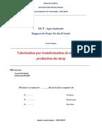RAPPORT PFE  V 1-4