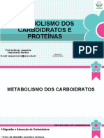 Aula 2 - Metabolismo de Carboidratos, Lípideos e Proteínas [Salvo automaticamente]