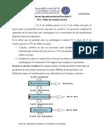 TD1 suite_bilan matière_