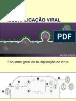 Aula - Multiplicação Viral