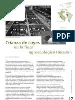 Granja de Cuyes Hecosan
