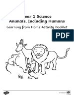 Year 1 Science Learning from Home (Animals, Including Humans) Activity Booklet