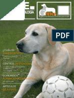 BoletinGretcaNº4.pdf