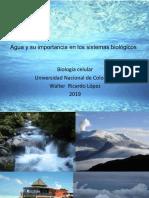 Agua y carbohidratos.pdf