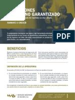MAV_Pase_No_Garantizado_Volante_04-01Muestra