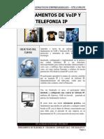 FUNDAMENTOS DE VoIP Y TELEFONIA IP