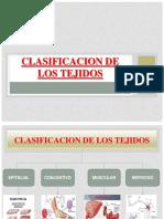 1.1 clasificacion de los tejidos.pdf