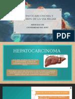 Copia de HEPATOCARCONOMA Y TUMORES DE LA VIA BILIAR CX2020
