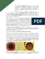 Investigacion Calculo Integral U4.docx