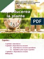 309624555-reproducerea-la-plante-ppt.ppt