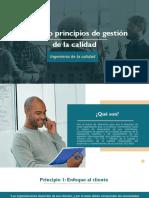 8 principios de calidad-1.pdf
