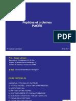 PACES_-_Poly_-_Protides_Peptide_et_proteines_LEHMANN_2010-2011_-_1_page_couleur