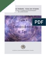 Lição 5 - Consciência, o Ser - A Essência da Iluminação - James Swartz