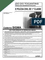 Delegado TO 2007.pdf