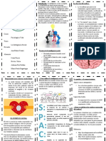 triptico de la inteligencia social modificado final.docx