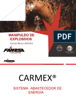 CARMEX DESCRIPCION