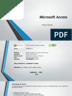 Microsoft Access.pptx