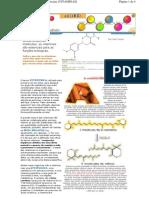 Química - UFSC - Vitaminas