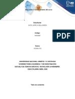 Plantilla del trabajo INDIVIDUAL Fase 0 (1).docx