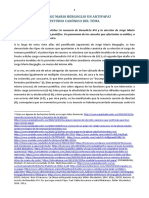 estudio-canocc81nico-de-la-renuncia-de-bxvi-y-de-la-elecciocc81n-de-jmb
