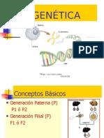 Power Point Nº 4 Genetica y Embriologia - Lloja