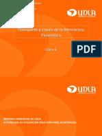 Clase 6. Transporte a través de la Membrana Plasmática. EXE.pdf