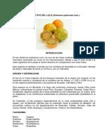 Aspectos agronómicos del cultivo del lulo
