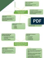 grafico mip.docx