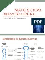 Aula Neuroanatomia.pptx