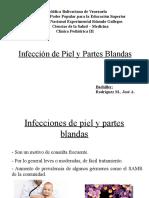 SEMINARIO INFECCION DE PIEL Y PARTES BLANDAS