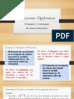funciones dominio y codominio