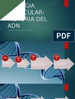 ADN HISTORIA.pptx