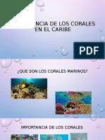 Importancia de los corales en el caribe