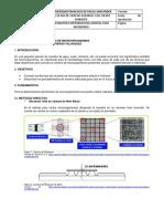 Guía Técnica de Recuento.pdf