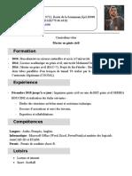 exemple_de_cv_66