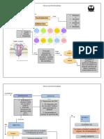 mapa mental neuromoduladores.docx