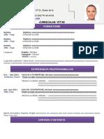 25-modele-cv-attrayant-violet