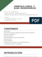 ANOMALIAS CROMOSOMICAS ESTRUCTURALES