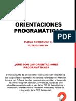2. Orientaciones programaticas