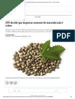 STF decide que importar semente de maconha não é crime - Jornal O Globo