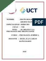 DELITO Y PSICOLOGIA DEL DELINCUENTE