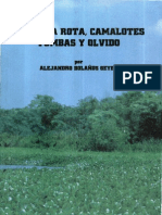 Alejandro Bolaños Geyes Campana Rota, Camalotes, Tumbas y Olvido
