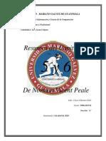 capitulos 5 y 6 norman.docx.pdf