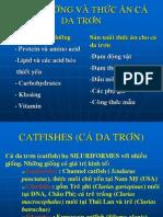 Dinh Duong Va Thuc an CA Da Tron (Tom Tat)