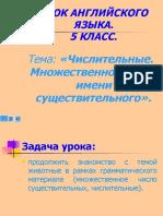 5_kl_chislitelnye_mn_chislo_sushch.ppt
