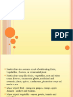 Dewraj Ppt on Wto on Horticulture