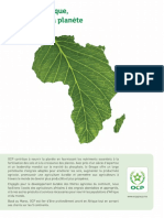 Afrique_Magazine.pdf