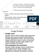 PPT PROTEIN LISNA.pptx